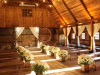 photo-of-wedding-setup-2291462